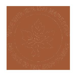 Maple Leaf - Maple