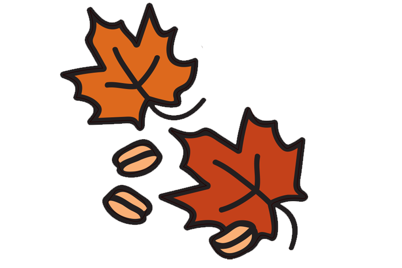 Maple Madness - Graphics