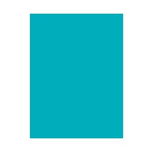 Vegan - Coconut