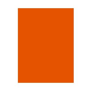 Vegan - FRUTIY